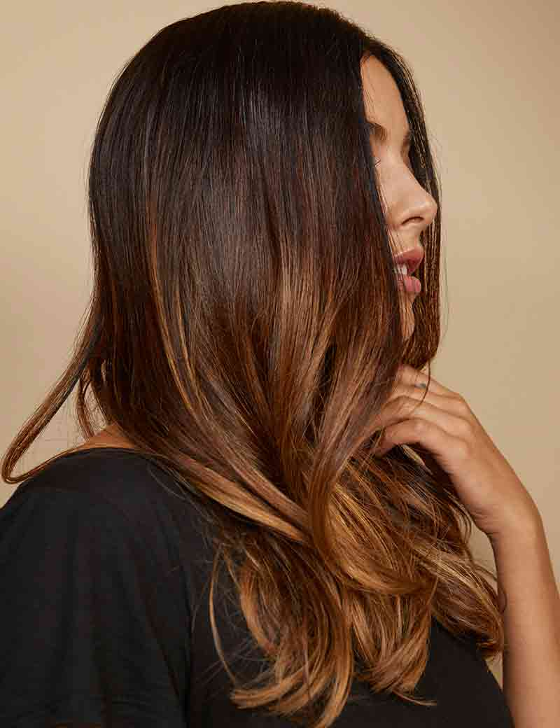 Beyond Brunette Brown Hair With Toffee Brown Ombre Redken