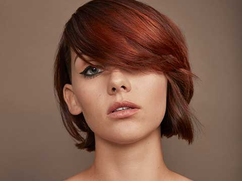 Redken Brunette haircolor ideas dark hair with highlights