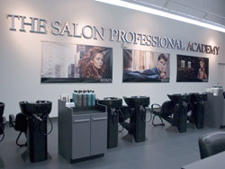 Careers become a hair stylist or colorist redken for Academy of salon professionals